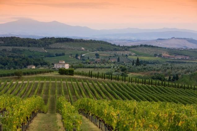 Krajobraz Chianti, Chianti, winiarnia, czarny kogut, black rooster, wino, winobranie