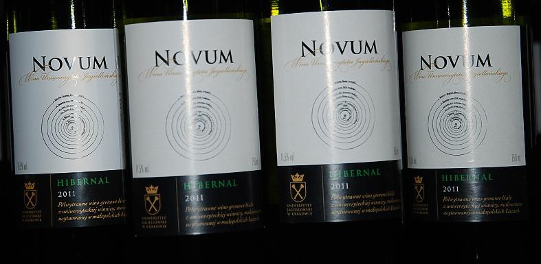 novum (2) -winnica nad potokiem